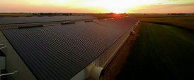New Horizon Farms
